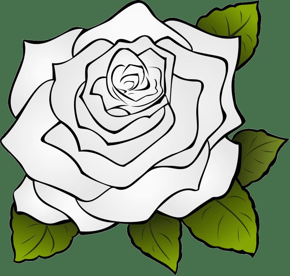 Раскраски цветы для взрослых