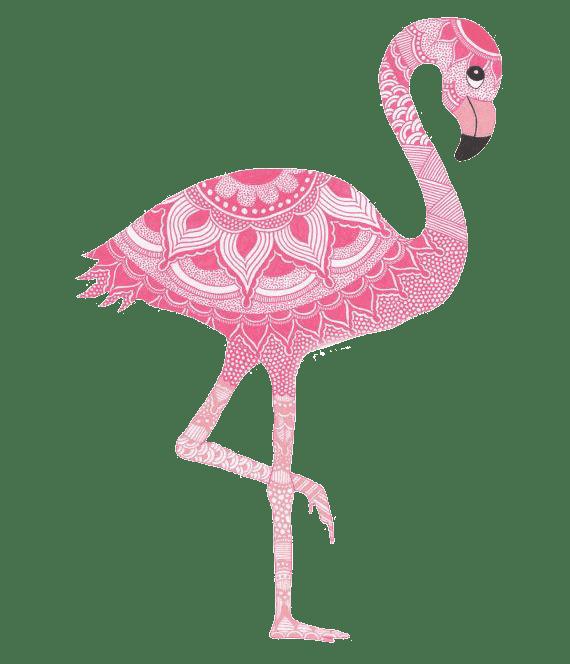 Раскраска антистресс фламинго