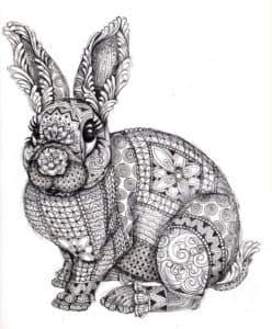 заяц раскраска