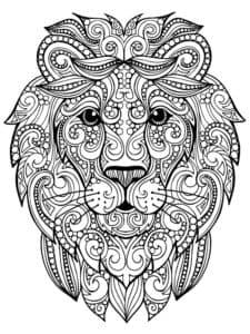 голова льва раскраски