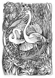 фламинго и ребенок