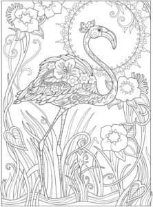 солнце и фламинго раскраска