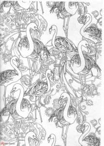 много птиц фламинго антистресс