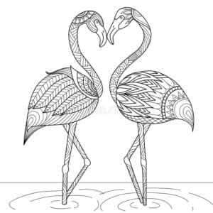 раскраска два фламинго в воде