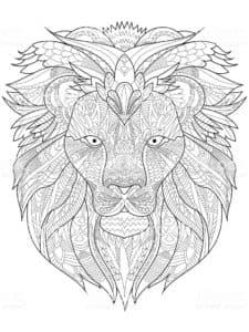 большая голова льва