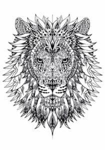 раскраска антистресс лев и грива