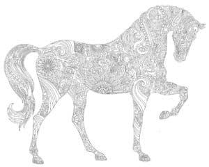 конь стоит