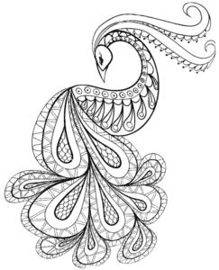 картинка павлин