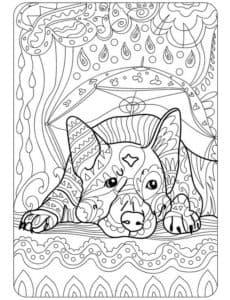 раскраска антистресс собака