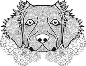 картинка собака и цветы