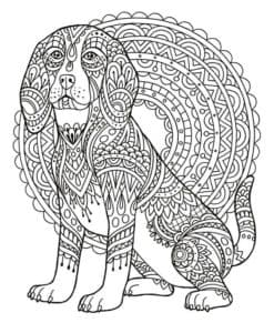 антистресс собака