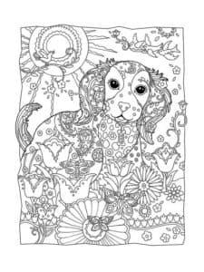 пес и цветы картинка