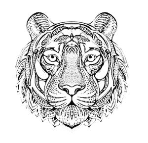 рисунок тигр антистресс