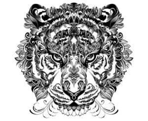 тигр с узорами