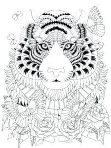 тигр и розы антитресс