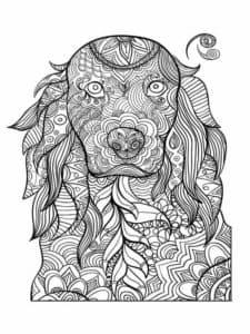 картинка собака