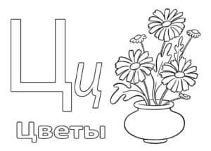 Цветы раскраска буквы Ц