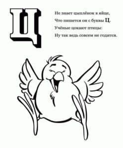 Большой цыпленок раскраска буквы Ц