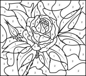 роза цифры