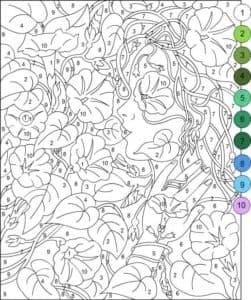 цветы цифры