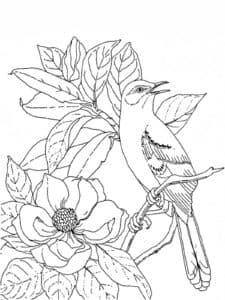 раскраска антистресс цветы и птица