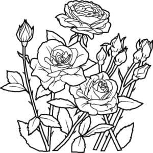 розы раскраска для взрослых