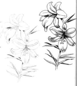 антистресс цветы для взрослых