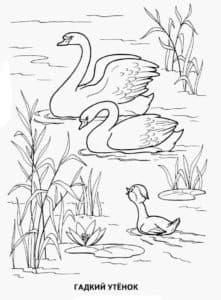 лебеди и гадкий утенок