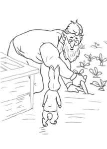 человек и кролик