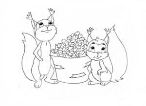 белочки и орехи