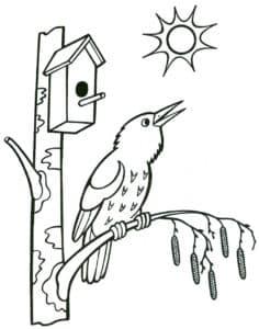птичка и скворечник