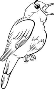 маленькая птичка раскраска