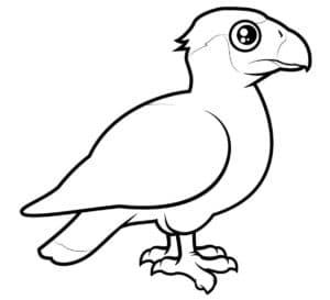 детская раскраска перелетная птица