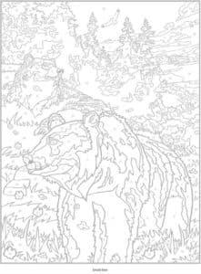 раскраска медведь антистресс с номерами
