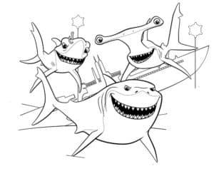 разные акулы