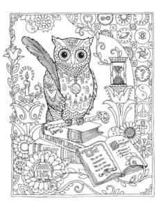 Сова антистресс с пером и книгой