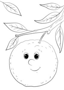 живой апельсин