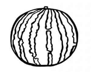 большой арбуз