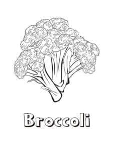 раскраска для детей брокколи