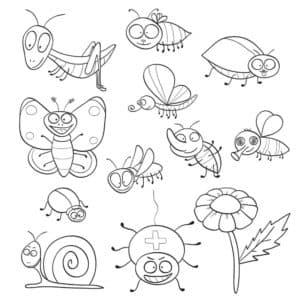 насекомые раскраска
