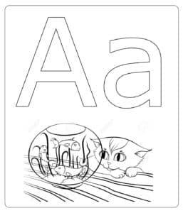 котик и аквариум