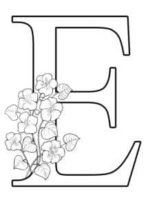 Е с цветочками