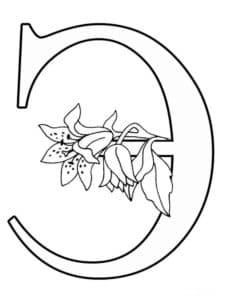 Раскраска буквы Э с цветочками
