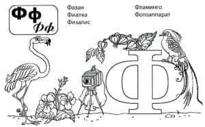 Буква Ф раскраска с животными