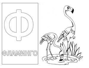 Фламинго детская раскраска