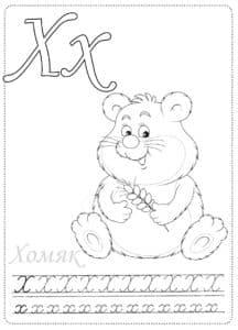 Буква Х раскраска с хомячком