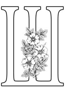 буква Ш с цветами