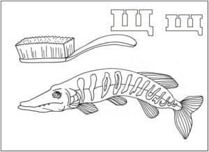 щука и зубная щетка