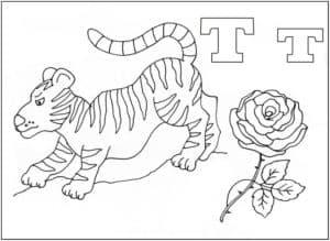 Тигр раскраска буквы Т