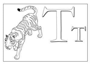 тигр раскраска детская